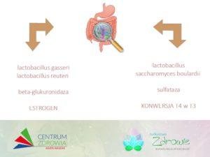 Mikrobiota ahormony